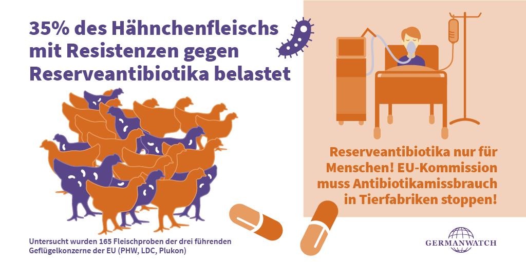Hähnchenstudie 2020: Antibiotikaresistenzen
